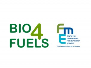 Bio4Fuels Days 2019 presentations