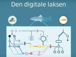 Den digitale laksen