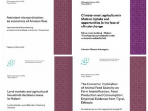 CLTS related Doctoral Theses: 2018 - 2020