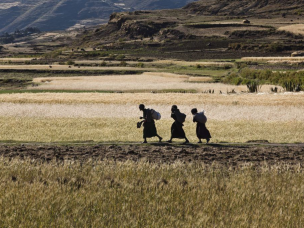 Farming women in Ethiopia