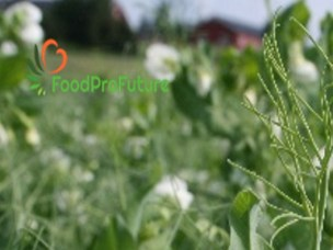 FoodProFuture invites you to a field tour August 21