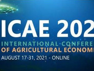 CLTS related presentations at the ICAE 31st Triennial