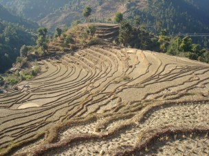 Asking the right questions in adaptation research and practice: Seeing beyond climate impacts in rural Nepal