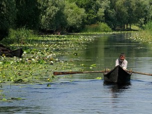 Changes in ecosystem services in the Danube Delta