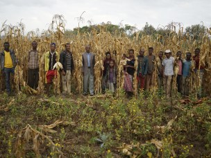 The use and abuse of the 'model farmer' approach in Ethiopia