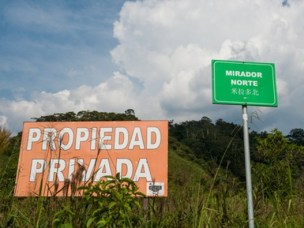 The Mirador copper mining project in Ecuador's richly biodiverse Cordillera del Condor is under the control of Chinese state-owned companies.