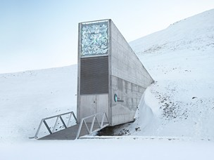 Ola Westengen on the preservation of Syria's seed reserves in Svalbard Seed Vault