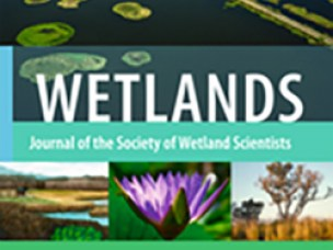 Wetlands: Journal of the Society of Wetland Scientists