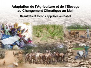 Adapting agriculture and livestock to climate change in Mali