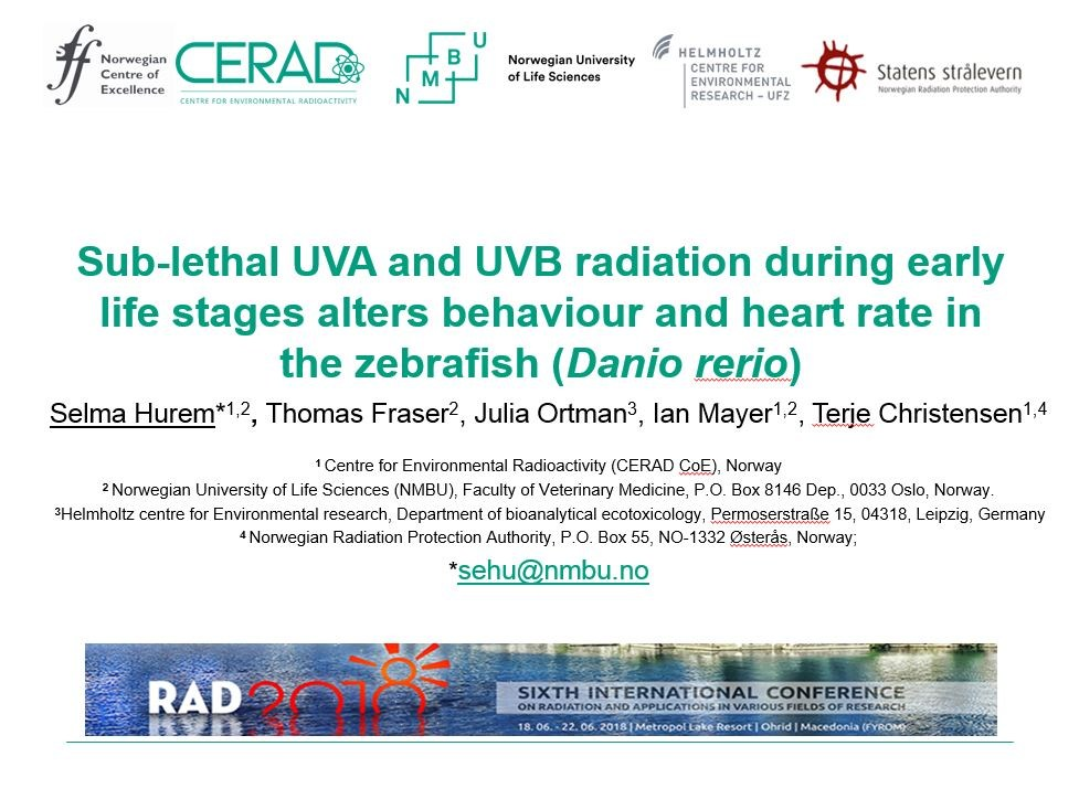 Selma Hurem's presentation at 6th International Conference on Radiation and Applications in various fields of research