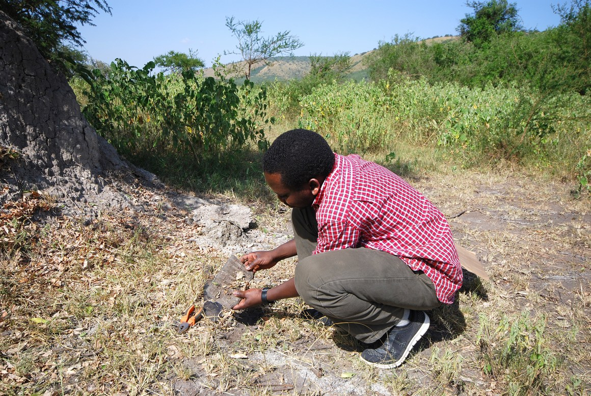 From PhD candidate Erik Francis Acanakwo's field work in Uganda.