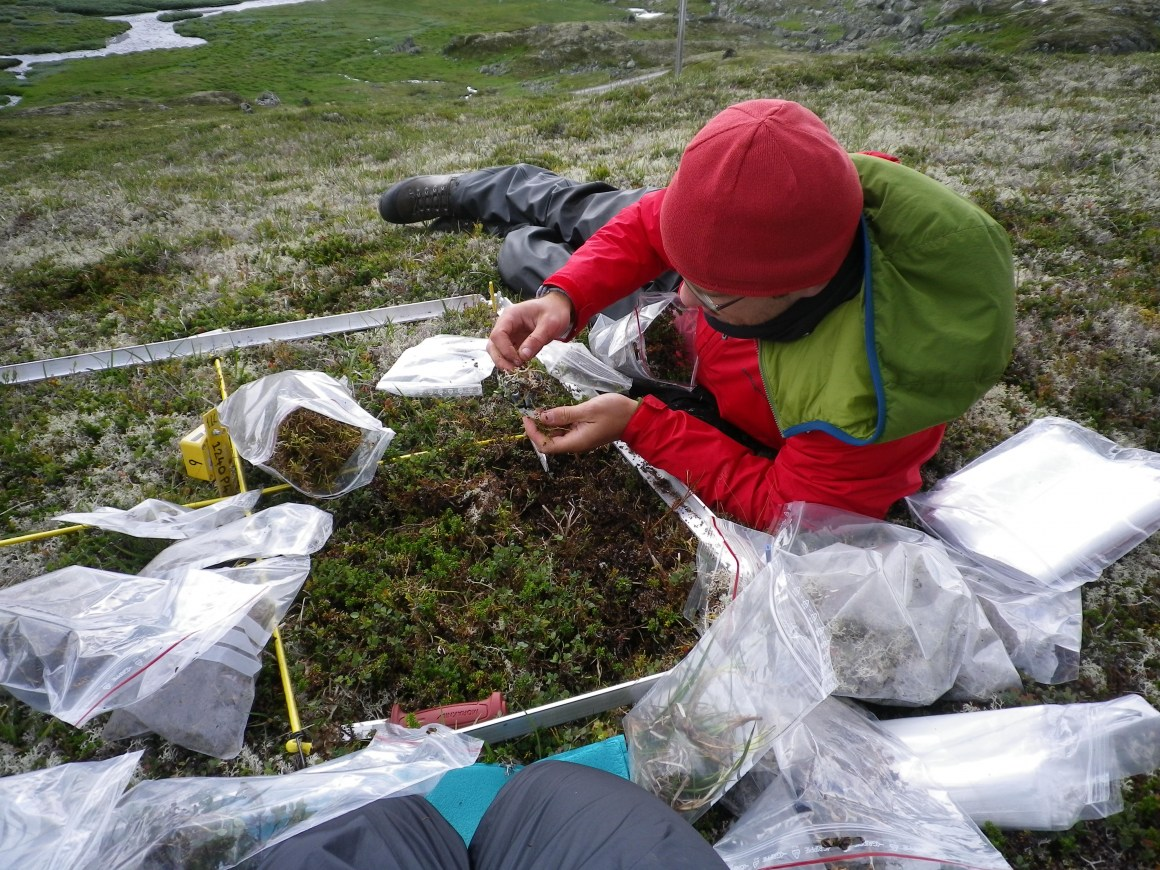 Ruben Roos doing his field work at Finse, Norway.