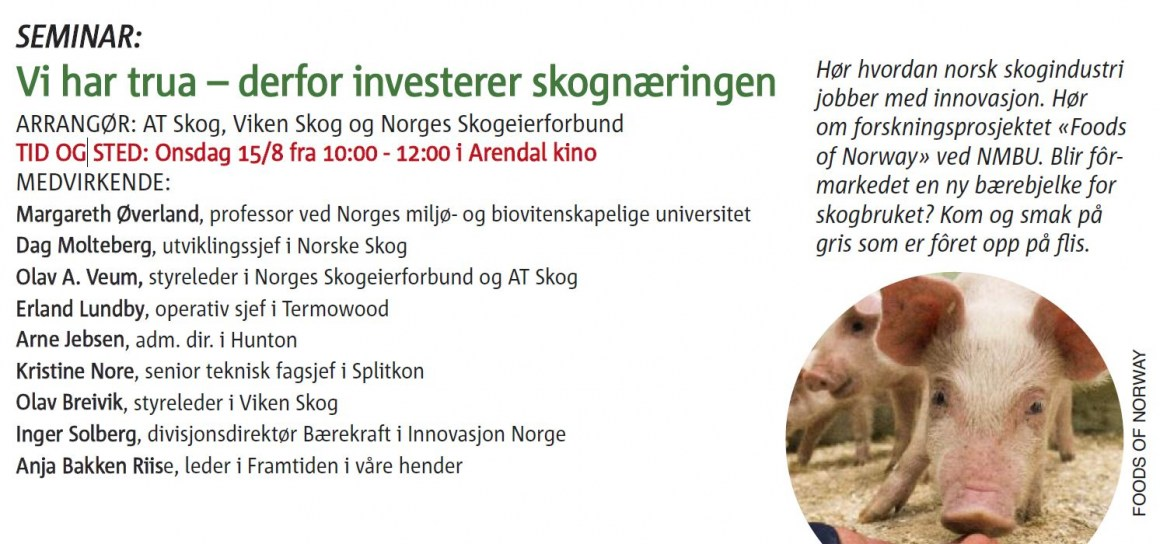 Centre director Margareth Øverland will be one of the speakers at a seminar during Arendalsuka.
