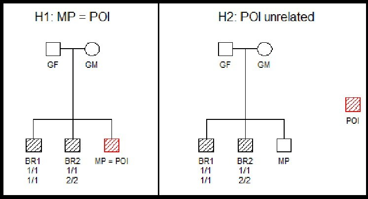 Testing relationships: A father (GF) and mother (GM) have three children, one of whom is a missing person (MP). Familias tests to see if a person of interest (POI) is indeed the missing child (left), or is someone else (right).