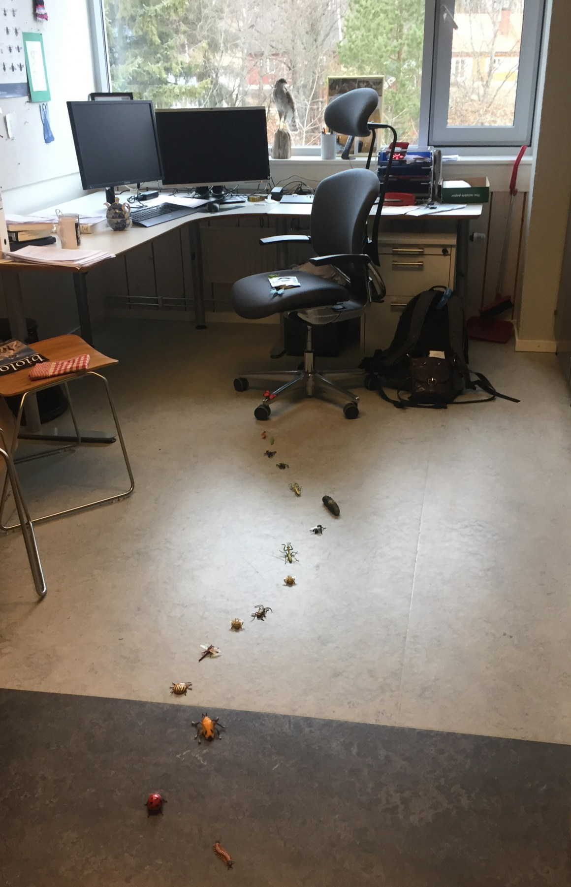 Welcome to work: A path of bugs