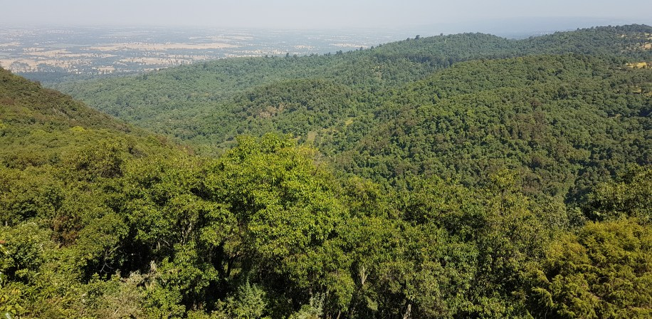 A portion of the study forest viewed from a hilltop showing the importance of the forest for watershed management