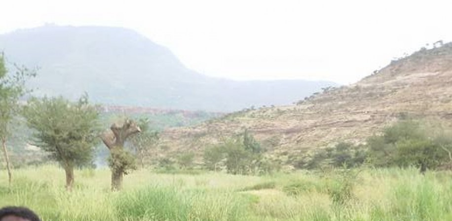 From the Northern highlands of Tigrai, Etiopia