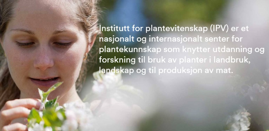 Institutt for plantevitenskap