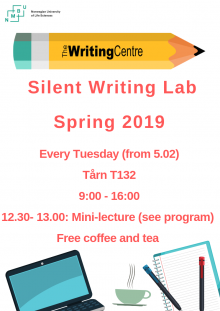 Silent Writing lab session