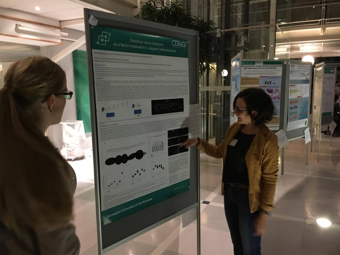 PhD student Erica Maremonti presenting her poster on testing radioresistance of C. elegans